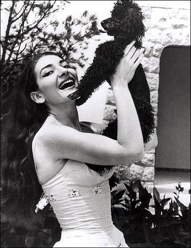 """Maria Callas mit """"Toy"""""""